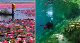 Des photos spectaculaires qui célèbrent la beauté époustouflante de la nature