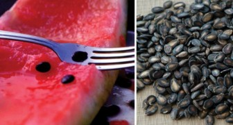 Do NOT throw away your watermelon seeds!