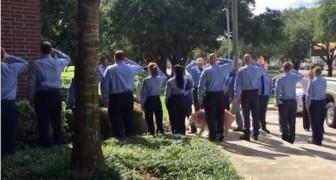 O último cão herói do 11 de setembro: a despedida dos colegas é emocionante!