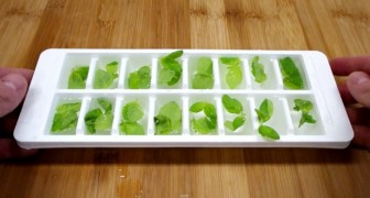 Put mint in an ice cube tray --- the quick way to prepare a famous cocktail at home!