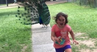 Dit meisje beleefde angstaanjagende momenten in de dierentuin: de foto die hier het resultaat van was, was voer voor fervente fotoshoppers!