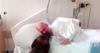 Being hospitalized he misses his dog --- A nurse manages the impossible!