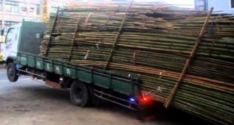 Come scaricare il bambù - LIKE A BOSS