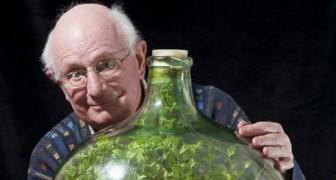 En 1960, il a scellé quelques graines dans une bouteille: voici le résultat après plus d'un demi-siècle