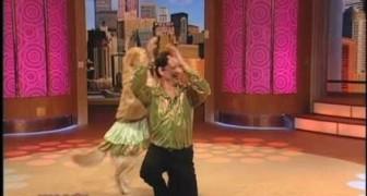 Le chien qui danse le merengue mieux que toi