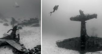 Un'istruttrice di sub scopre un cimitero di aeroplani nel bel mezzo del Pacifico. Ma una spiegazione c'è