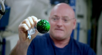 Put an effervescent tablet in water in zero gravity --- Look what happens!