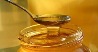 Vous ne le savez peut-être pas, mais une grande partie du miel sur le marché n'a aucun élément nutritif. Voilà pourquoi