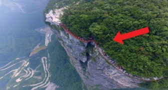Un paseo sobre el puente colgante: este puente de vidrio da escalofrios bordeando la montaña