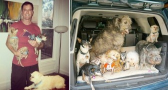 Va al canile per adottare un cane, ma non sa che da quel momento la sua vita cambierà