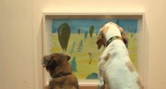 Il primo museo per cani: ecco la mostra che ha fatto agitare centinaia di code!