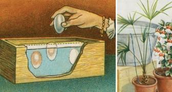 8 geniale Tricks zum nachmachen mehr als 100 Jahre alt