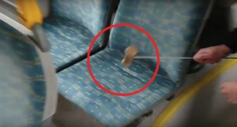 He hits a bus seat with a mallet --- what comes out is totally . . . UNEXPECTED.