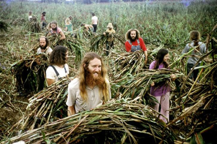 14 faszinierende Fotos von den Hippie-Gemeinschaften der
