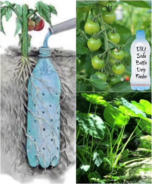 Discover A Very Easy And Efficient Garden Irrigation System