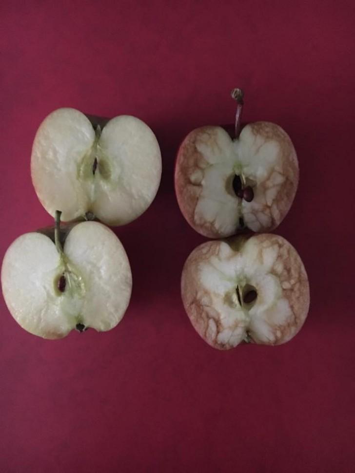 Una maestra lleva 2 manzanas a clase y explica a los niños ...