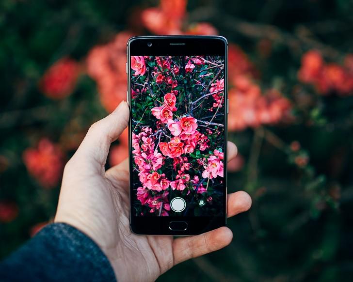Hier Das Shazam Für Die Natur Die Neue Gratis App Die Pflanzen