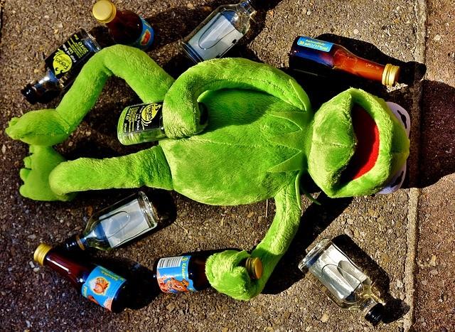 Als Je Straks Weet Hoe Je Hersenen Op Alcohol Reageren Dan Wil Je
