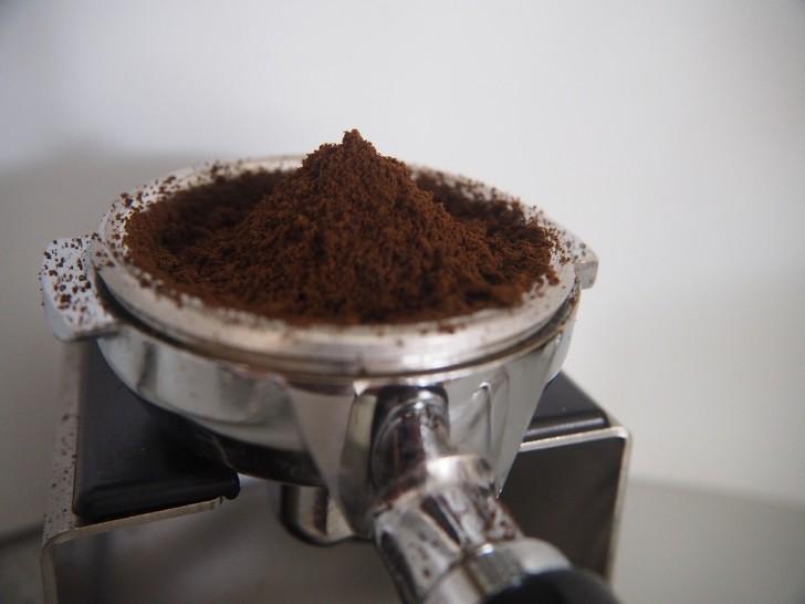 gödsla med kaffesump