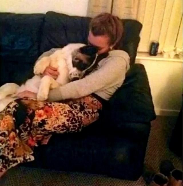 frau schwanger von hund