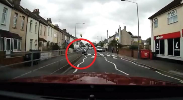 Il filme un chat sur le côté de la rue: ce qu'il fait est vraiment difficile à croire