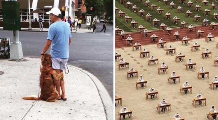 26 foto dal web che riescono ad emozionare o suscitare una reazione di stupore