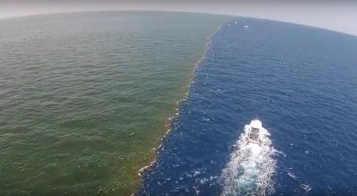 O rio e o mar se encontram: um verdadeiro espetáculo... mas o que tem por trás é inquietante