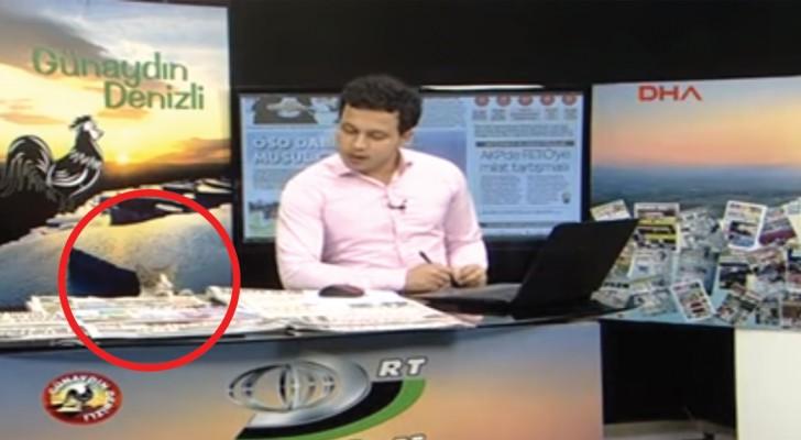 Durante il telegiornale un intruso entra nello studio: il giornalista reagisce da vero professionista!