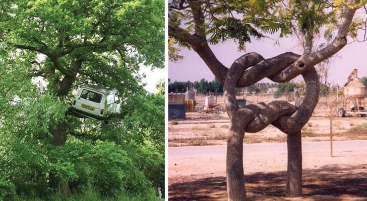 20 photos incroyables qui vont vous faire dire: comment c'est possible ?