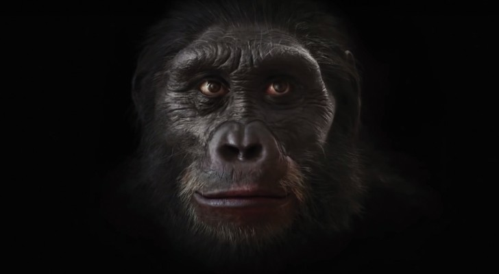 200.000 años de evolucion humana en 90 segundos: espectacular!