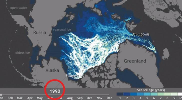 Das arktische Eis verschwindet: dieses Video zeigt uns die erschütternde Wahrheit