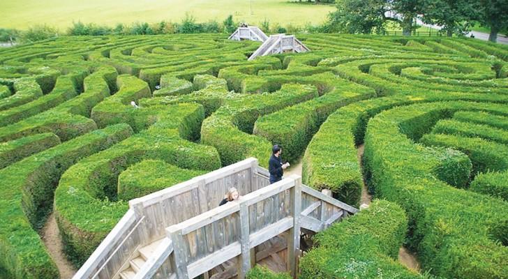 Vi piacciono le sfide? Il labirinto più lungo del mondo metterà a dura prova le vostre abilità