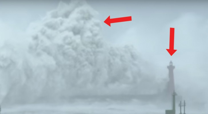 See a lighthouse stand up to a TYPHOON!