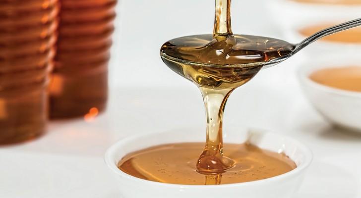 Découvrez si le miel est pur ou manipulé: voici 3 tests simples à faire à la maison