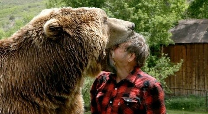 My dear friend Bear!