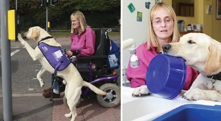 Cette femme réussit à vivre grâce à son chien-guide: voici de quoi est capable Byron