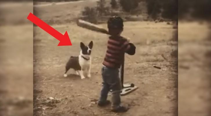 Il bambino lancia e il cane recupera: allenarsi non è mai stato così divertente e... Facile!