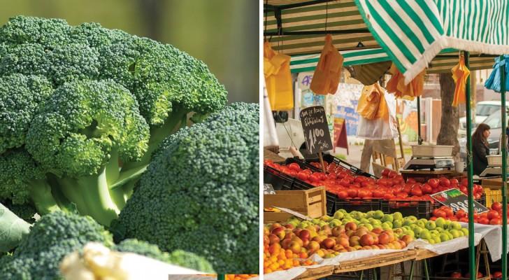 Importierte Lebensmittel aus dem Ausland: Hier die verunreinigsten Lebensmittel, die man vermeiden sollte