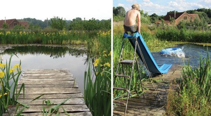 Het lijkt gewoon een vijver maar is in alle opzichten een zwembad, maar dan natuurvriendelijk en zonder chloor!