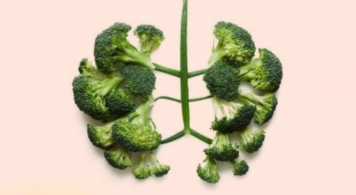 10 groenten die je lichaam bijstaan en je gezond houden