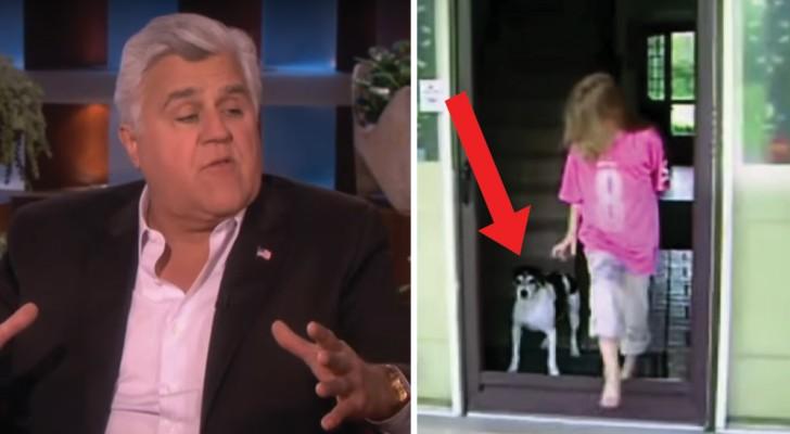 Un noto comico porta in TV la prova che i gatti sono più intelligenti dei cani: vi convince?