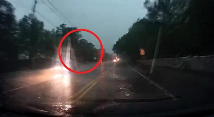 Un fulmine si abbatte sull'albero al lato della strada: la potenza del fenomeno è impressionante