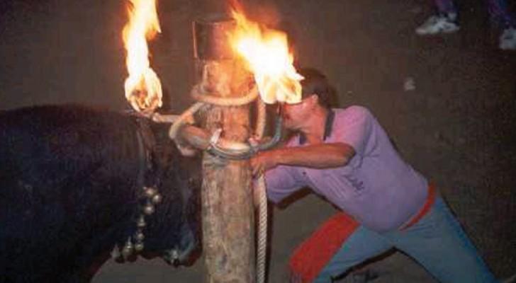 Corrida et pas seulement: voici les traditions douteuses de taureaux espagnols que vous ne connaissiez pas
