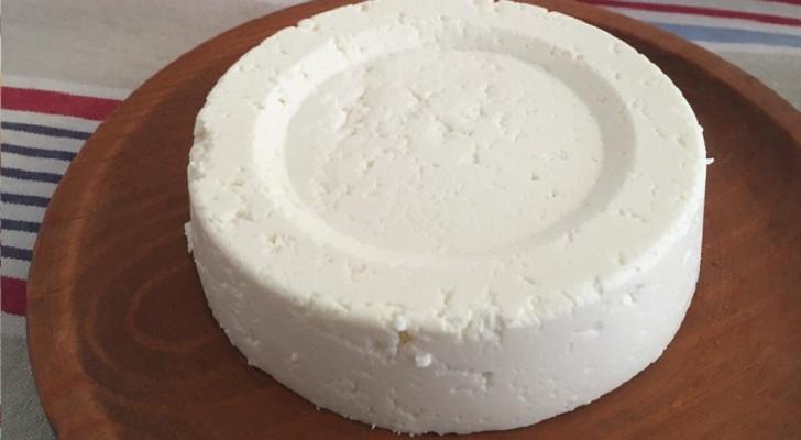 Mit einem Liter Milch, einem Becher Joghurt und einer halben Zitrone kannst du hausgemachten Frischkäse herstellen!