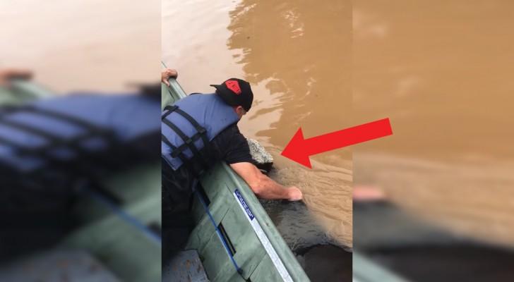 Ze zijn al een uur aan het varen om deze koe te redden na een overstroming: als ze de oever bereikt zal dit je niet ongeroerd laten!