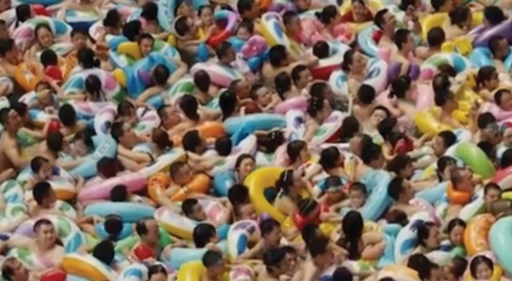 Ammassati in una vasca: l'incredibile video di una piscina in Cina durante una giornata torrida