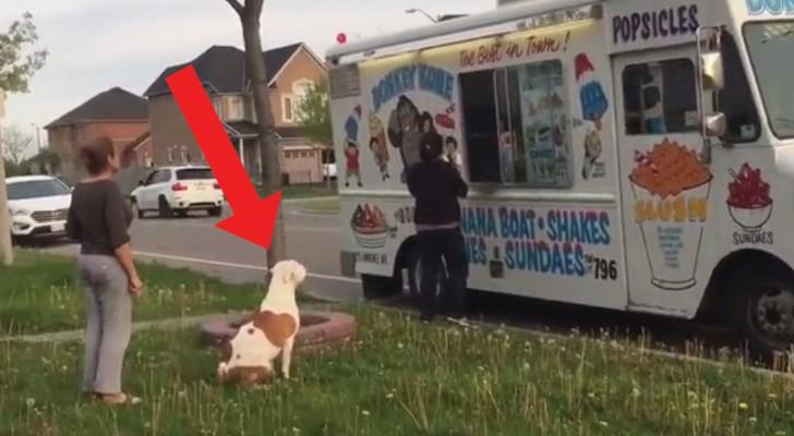 In zona arriva il furgoncino del gelato. Chi c'è a fare educatamente la fila? Troppo simpatico