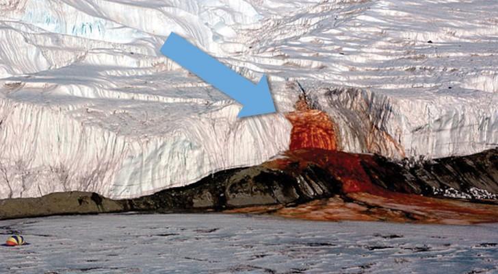 Na 100 jaar is het mysterie rondom de bloedwatervallen opgelost: ontdek wat daar op de Zuidpool gebeurt