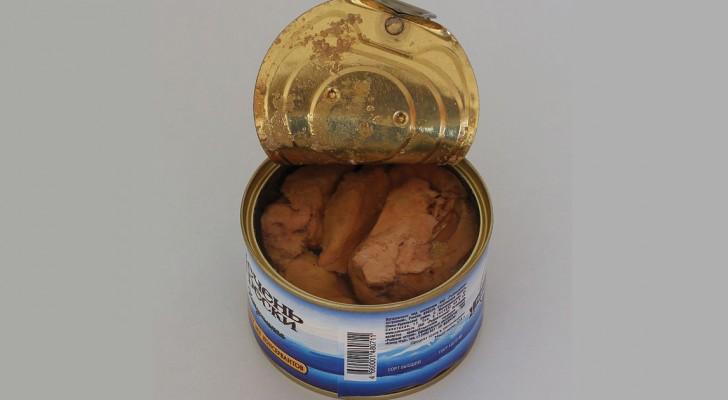 Gute Gründe um keinen Thunfisch mehr zu essen. Er ist nicht so gesund wie es scheint