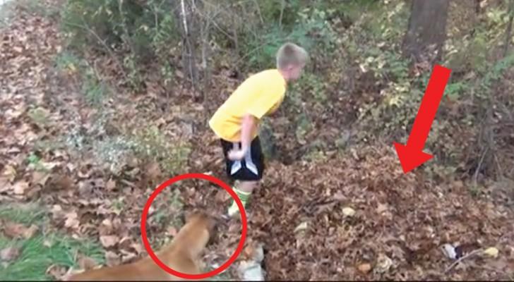 Il bambino sparisce davanti ai suoi occhi: il cane è confuso ma poi agisce da bravo guardiano
